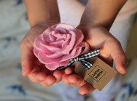 Pink flower in Lucy's Hands